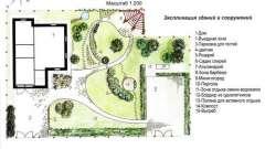 Як упорядкувати присадибну територію за допомогою ландшафтного дизайну