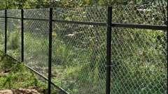 Як зробити паркан із сітки рабиця?