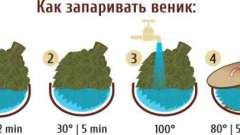 Як запарити віники для лазні: листяні, трав'яні і хвойні?